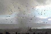 ارتفاع عدد قتلى فيجي بسبب إعصار ونستون المدمر