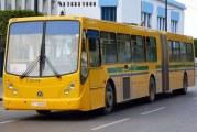 حافلات جديدة لتعزيز أسطول النقل في الأحياء