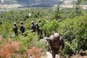 جبل سمامة: إصابة جنديين في عملية عسكرية