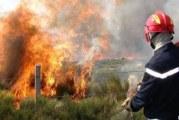 الهوارية : اندلاع حريق في غابة دار شيشو