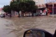 اريانة: أمطار طوفانية وبنية تحتية مهترئة (فيديو)