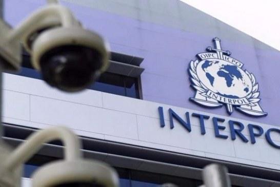 الإنتربول: 173 داعشيا تلقوا تدريبات لتنفيذ هجمات بأوروبا
