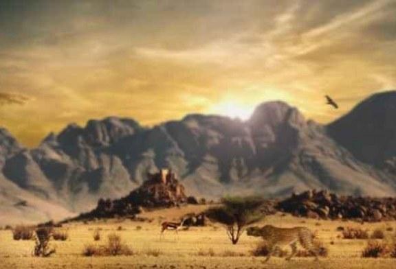 دراسة مخيفة: موجة الانقراض السادسة بدأت على الأرض