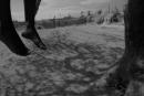 حي العوينة..العثور على فتاة ال 21 سنة مشنوقة في شجرة زيتون بمنطقة وادي الحلوف
