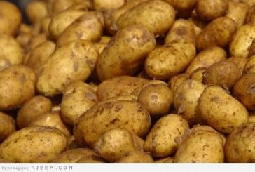 التسعيرة القانونية لكيلو غرام البطاطا 1180 مليما و تباع للمواطن ب2200 مليم