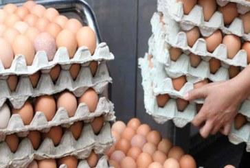 المنستير: حجز 9 آلاف بيضة غير صالحة للاستهلاك على متن شاحنة