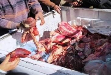 زغوان: حجز 240 كلغ من لحم بقري مُصاب بداء السل