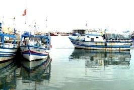 قابس ، البحارة يطالبون بتفعيل الاتفاق الحاصل حول توزيع حصة التن الأحمر عن سنة 2018