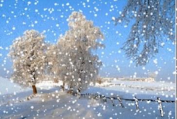 دعوة مستعملي الطريق إلى عدم المجازفة بالعبور بأماكن تراكم الثلوج أو نقاط سيلان مياه جارفة خاصة بولايات الشمال والوسط الغربي اليوم وغدا