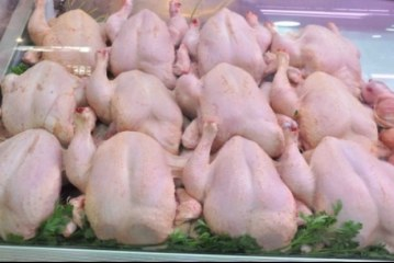 غرفة مذابح الدواجن تلتزم بأن لايتجاوز سعر لحوم الدجاج 7 دنانير في أقصى الحالات