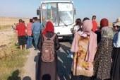سيدي الهاني : تعطب حافلة لنقل الركاب والمسافرين يطالبون باسترجاع ثمن التذاكر