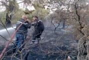 """سليانة: السيطرة على حريق نشب صباح اليوم بجبل """"بوكحيل"""""""