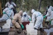 منظمة الصحة تخشى تسجيل مليوني وفاة بسبب وباء كورونا