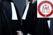 هيئة المحامين: تعطل مرفق العدالة لمدة 6 أسابيع كان لغايات مادية بحتة