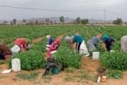 سليانة: تنظيم يوم تحسيسي لفائدة النساء العاملات في قطاع الفلاحة