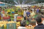 المرصد الوطني للفلاحة:سوق الجملة تسجل تراجعا لمعدل أسعار الغلال وسط ارتفاع بعض الخضر والاسماك