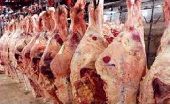 نابل: حجز 800 كلغ من اللحوم الحمراء في مخزن عشوائي ببني خيار