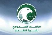 الفيفا:إقامة كأس العالم كل عامين
