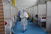 وزارة الصحة: تسجيل 31 وفاة و786 إصابة جديدة بفيروس كورونا