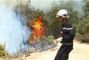 إطفاء 130 حريقا في مناطق مختلفة خلال الأربع وعشرين ساعة الماضية