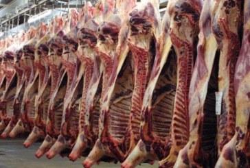 شركة اللحوم:لحم الضأن بأسعار أقل من 22 دينارا
